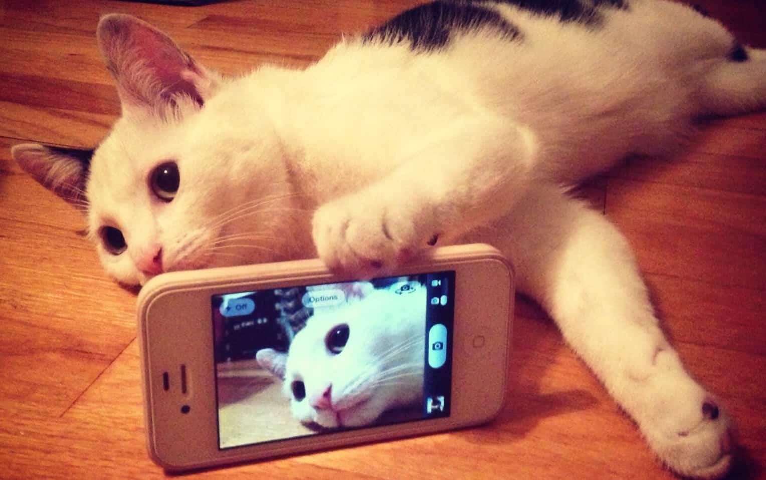 """Photo of La scienza dice che: """"Chi si fa Selfie ha disturbi mentali"""" ?"""