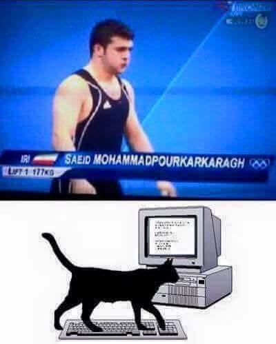 Photo of Che trambusto quel giorno che un gatto fu assunto all'ufficio anagrafe!