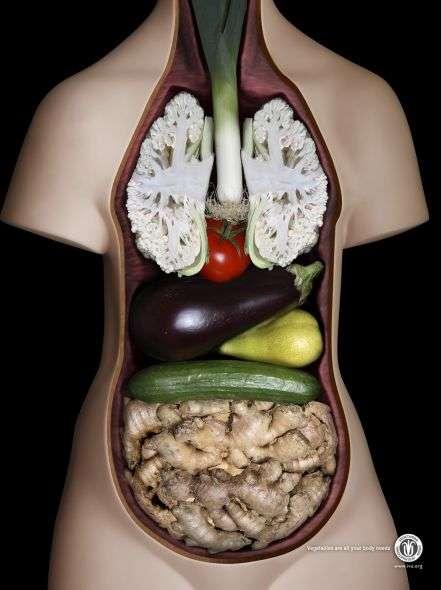 La Dieta Vegana le procurò un effetto collaterale di poco conto