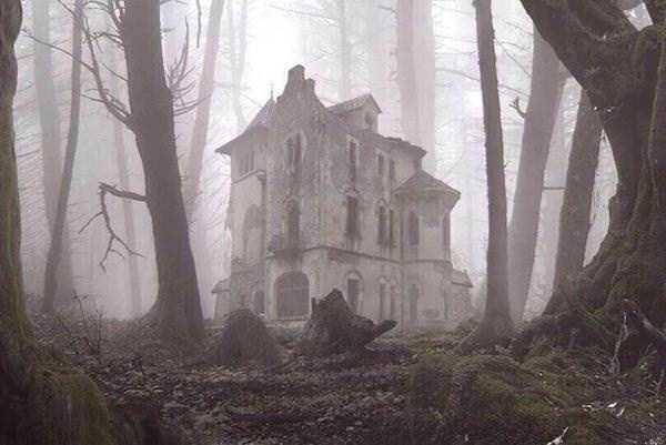 Photo of Vieni .. c'è una casa nel bosco ..